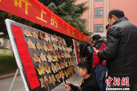 """河南一高校百余名学生绘制树叶上的""""水浒""""140余名学生集体完成的"""