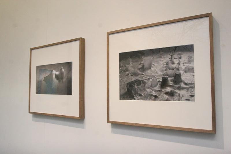 赫芬顿邮报评出的14个2014年最棒艺术展