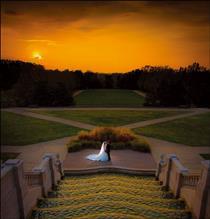 光影誓言 用背景光让婚礼照片栩栩如生
