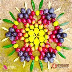 储楚-新势力-中国画家摄影门户网站